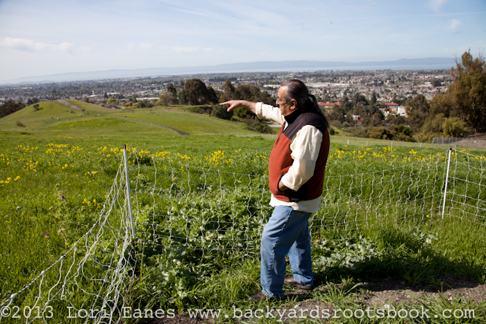 Hank Herrera shows the brand new City view farm plot in 2012.