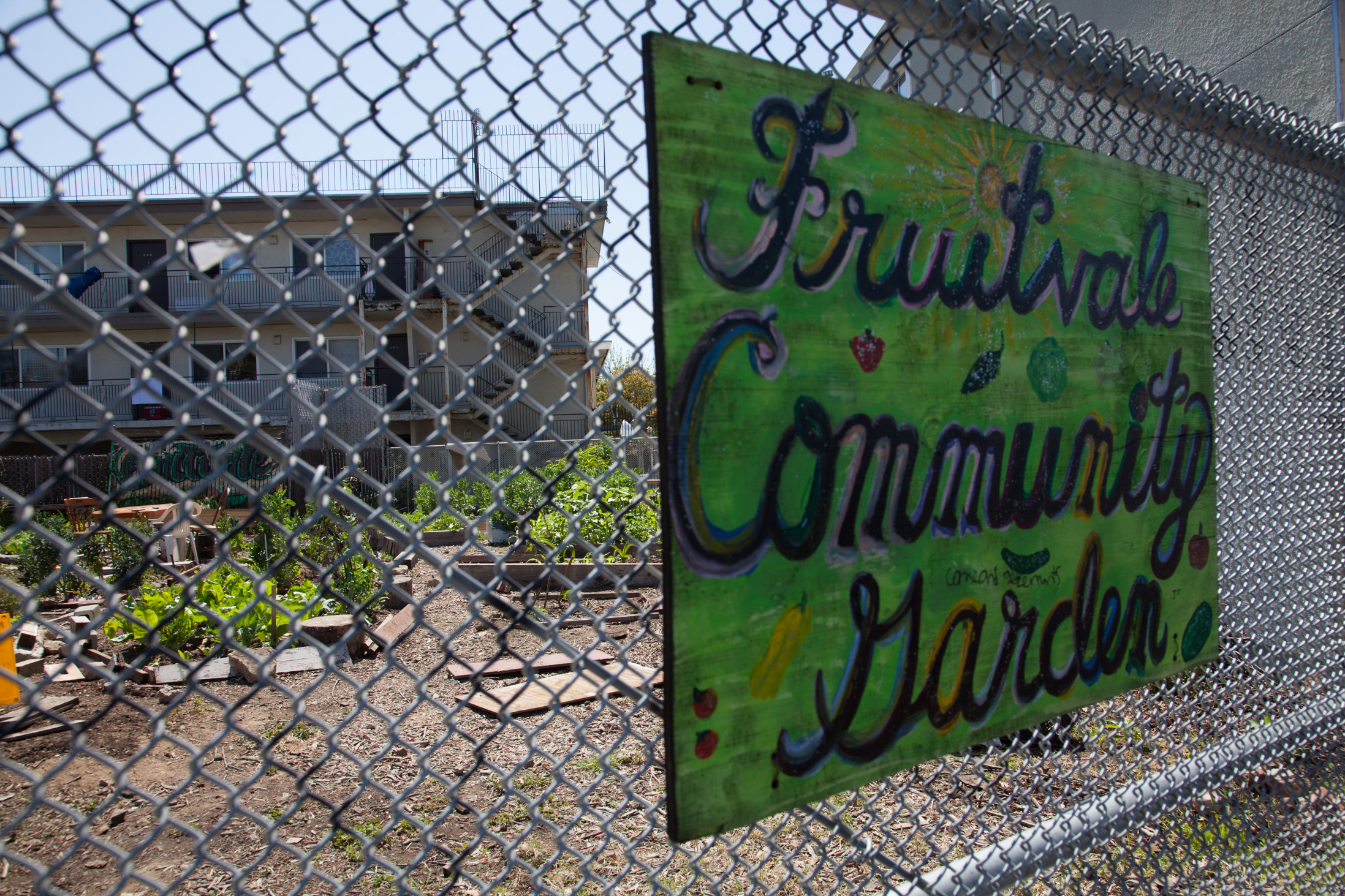 Fruitvale Community Garden located at 2759 Foothill Blvd. Photo by Lori Eanes.